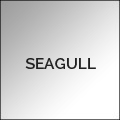 SEAGULL-120x120