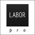 labor-120x120